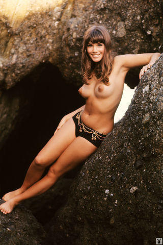 models Barbi Benton 2015 spicy art in the club