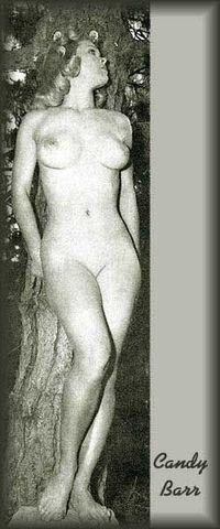 models Candy Barr young drawn photo in public