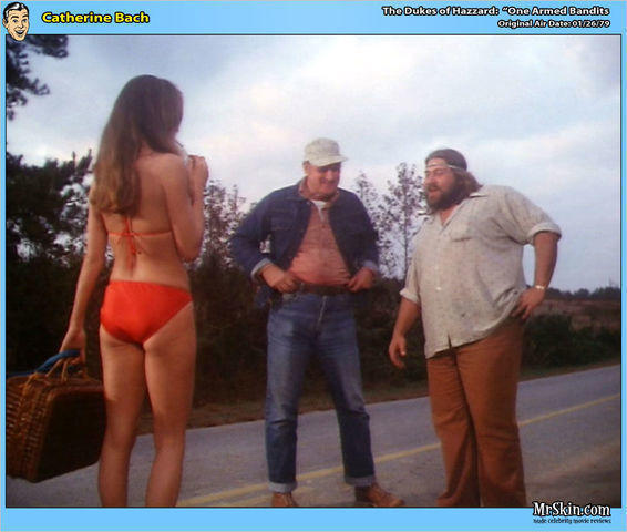 Catherine Bach topless snapshot
