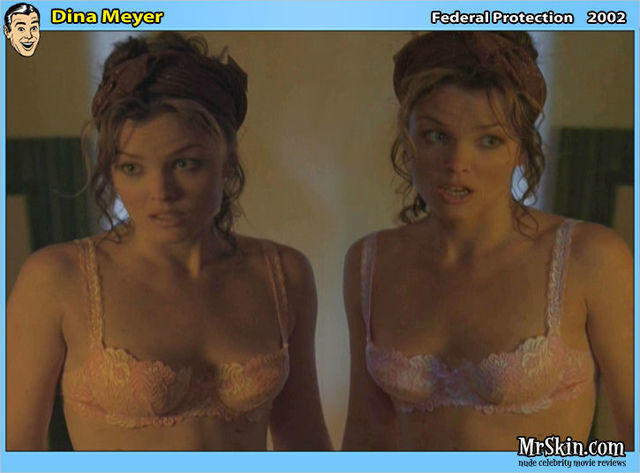 models Dina Meyer young in the altogether photo in the club