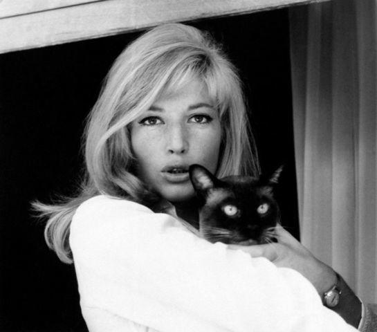 actress Monica Vitti 20 years risqué snapshot in the club