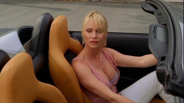 Nicollette Sheridan topless art